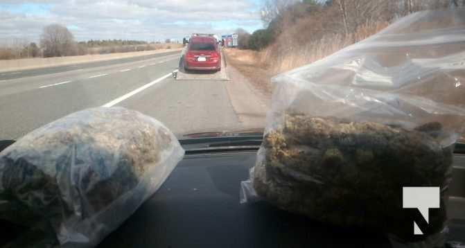 Stunt and Cannabis 1.2