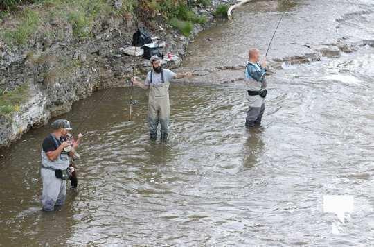 Ganaraska River Fish446