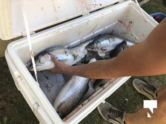 aug 1 fish118