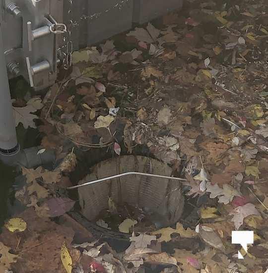 plastic clean up Oct 30 202033