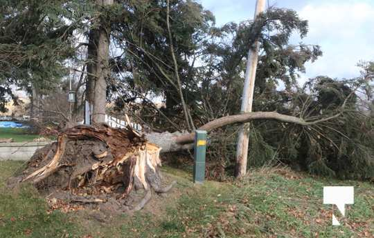 high winds November 16, 2020113