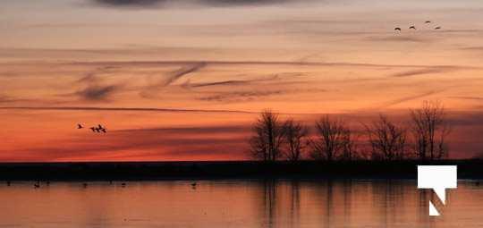 winter sunset january 9, 2021033