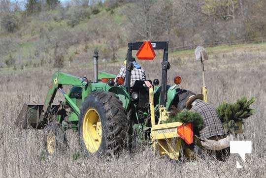 Planting Trees Cramahe Township May 1, 20211827