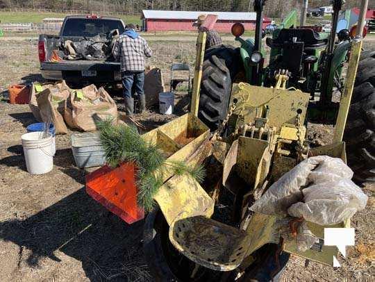 Planting Trees Cramahe Township May 1, 20211828