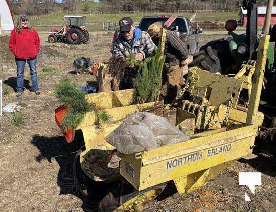 Planting Trees Cramahe Township May 1, 20211830