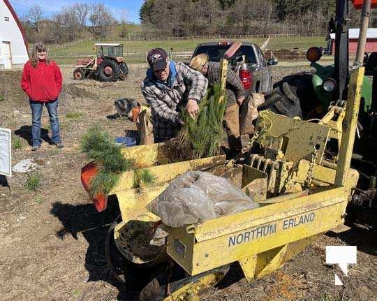 Planting Trees Cramahe Township May 1, 20211831