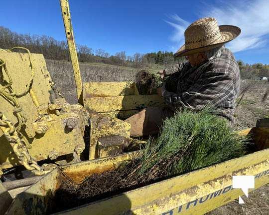 Planting Trees Cramahe Township May 1, 20211838