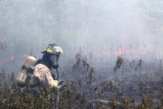 Brush Fire Cramahe June 13, 20213036