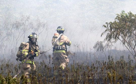 Brush Fire Cramahe June 13, 20213038