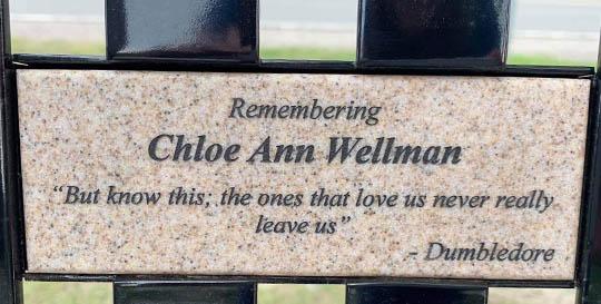 Chloe Wellman June 23, 20213317