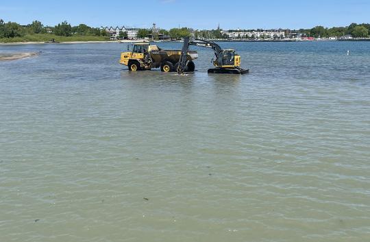 Digging Cobourg Harbour June 15, 20213139