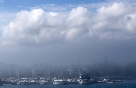 Fog Cobourg June 8, 20212852