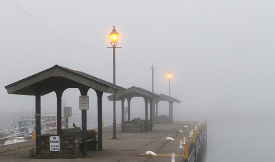 Fog Cobourg June 8, 20212853