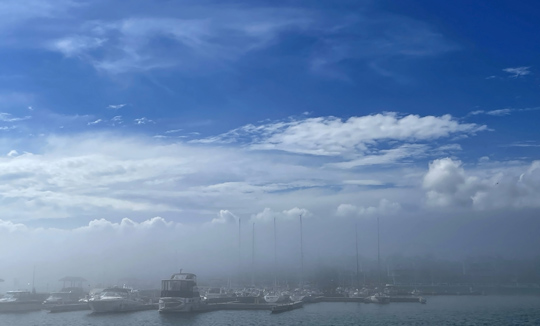 Fog Cobourg June 8, 20212855