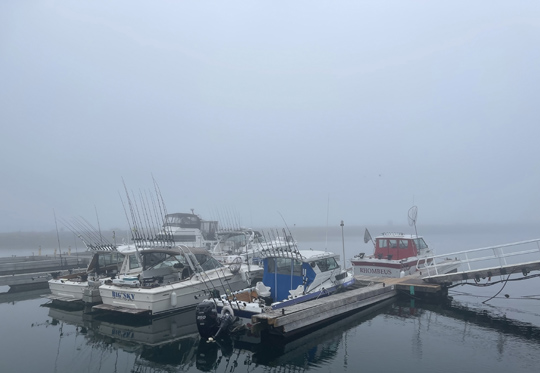 Fog Cobourg June 8, 20212858