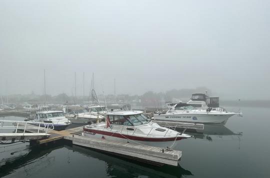 Fog Cobourg June 8, 20212859
