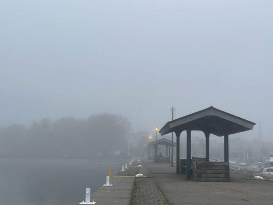 Fog Cobourg June 8, 20212861