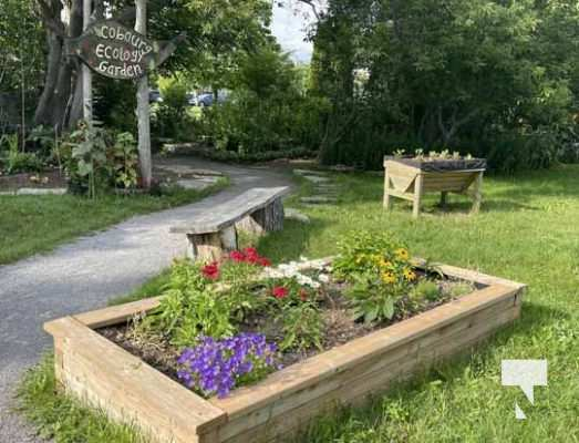 Cobourg Ecology Garden July 13, 20213953