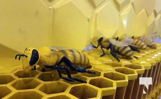 Dancing Bee Equipment July 26, 20210130