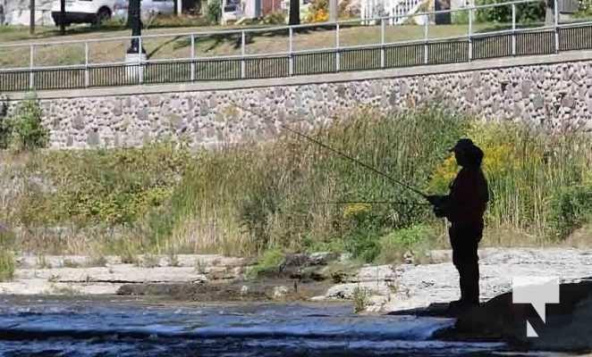 Ganaraska River Salmon September 6, 20210337