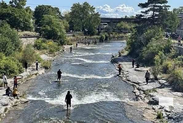 Ganaraska River Salmon September 6, 20210344