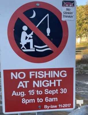 Salmon Fishing Port Hope September 8, 20210512