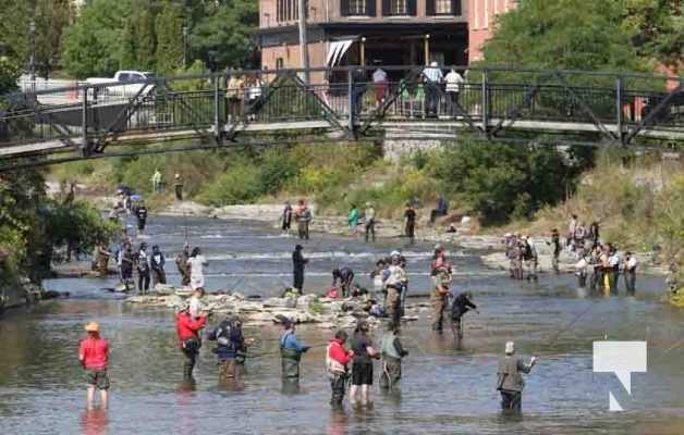 Salmon Ganaraska River Port Hope September 12, 20210088