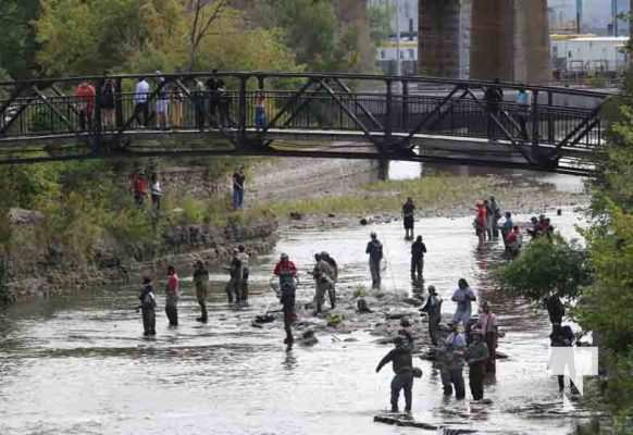 Salmon Ganaraska River Port Hope September 12, 20210092